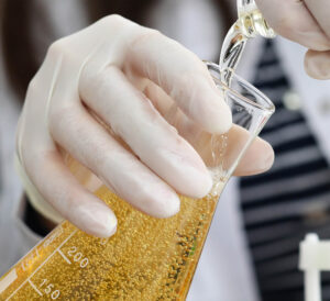 Majoring In Beer
